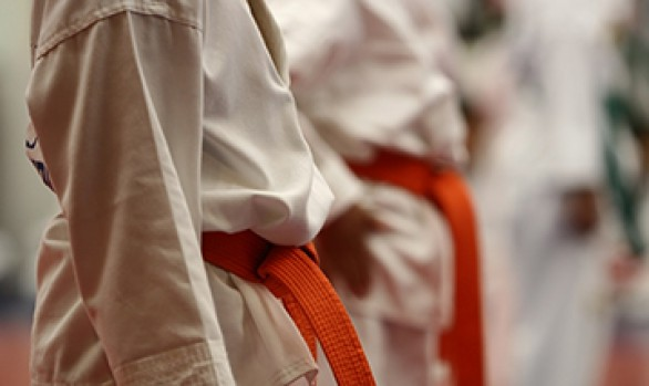 Team Odense Taekwondo webdesign